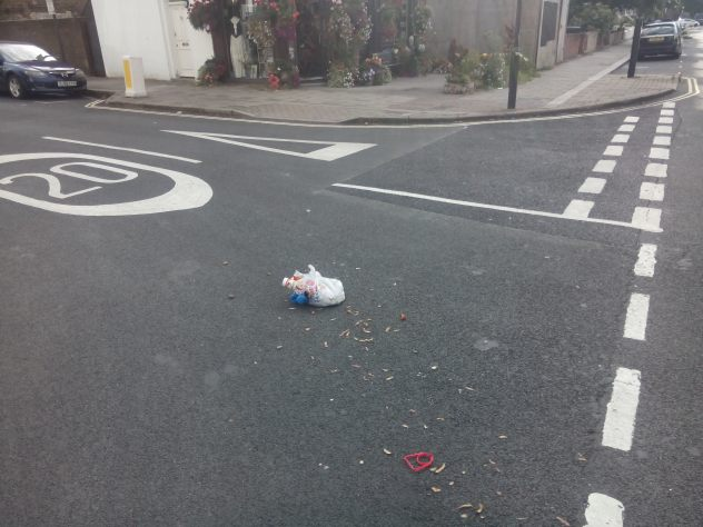 litter-in-the-road2